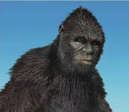 Bigfoot analysis clip image032