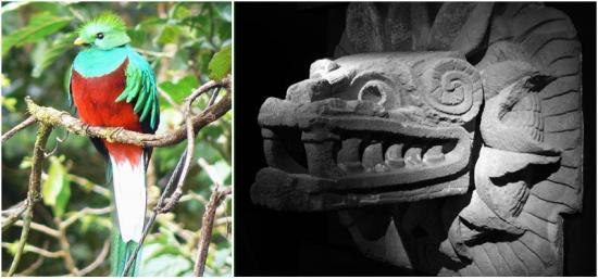 comparatif-entre-le-quetzal-et-le-quetzalcoatl.jpg