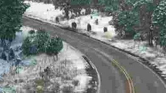 bigfoot, hominidé inconnu, Eber, Philippe Banck, sasquatch, ministère des Transports de l'Arizona, Arizona Department of Transportation's, Arizona, canular, Etats Unis, janvier 2015, vidéo, cryptozoologie