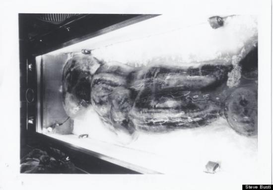 Cryptozoologie-cryptozoology-Iceman du minnesota-Texas-Austin-Frank Hansen-hominidé inconnu-Bernard Heuvelmans-Porchnev-Sanderson-Steve Busti