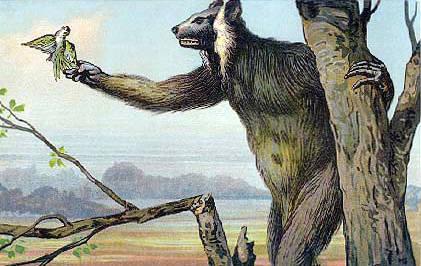 cryptozoologie-cryptozoology-lémurien géant-Palaeopropithecus kelyus-Madagascar-Melba Ketchum-bigfoot-sasquatch-hybridation-hominidé inconnu-test adn
